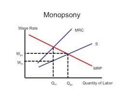 Monopson Grafiği