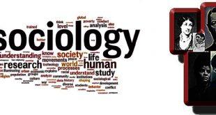 Sosyoloji Nedir? Sosyoloji Bölümü